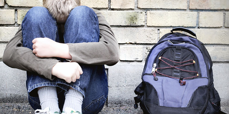 Peer Support as an Anti-Bullying Strategy at Local Authority Level